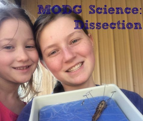 MODG Science:  Dissection
