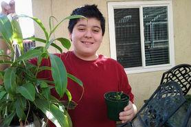 Chomp!  The World of Carnivorous Plants