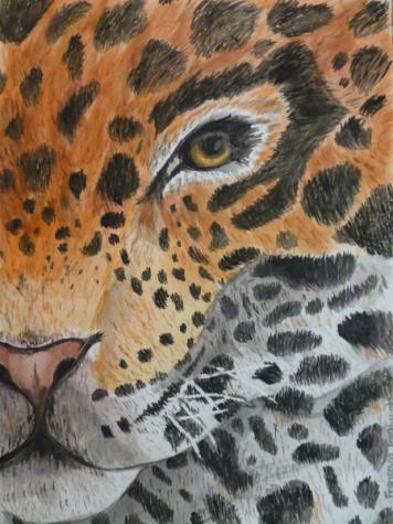 The Jaguar - Faraj, Francesca - grade 9 - HM