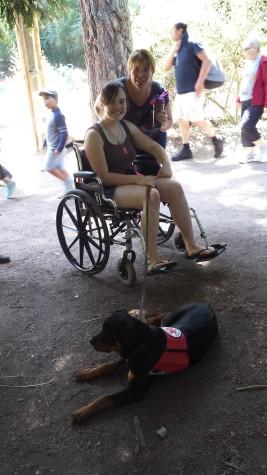 rev tasha wheelchair