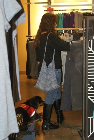 rev roca shopping