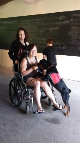 rev tasha wheelchair 2