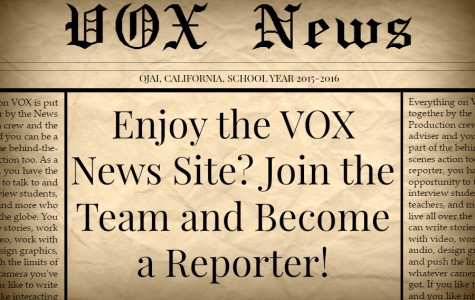 Enjoy the VOX News Site? Join the Team and Become a Reporter!