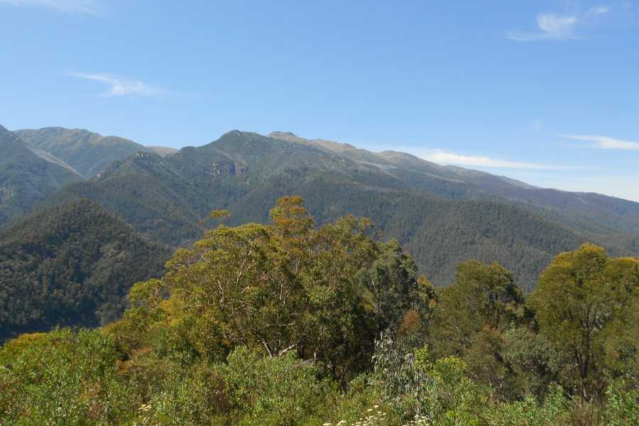 Snowy River Mountains, Australia Callan used his Nikon Coolpix for this shot.