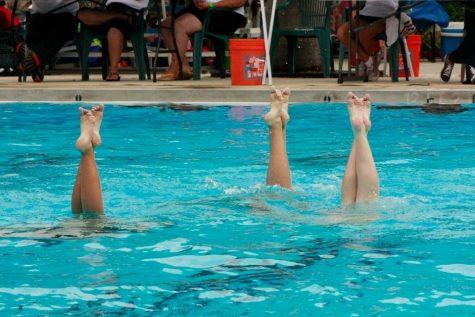 synch-swimming-5-nic