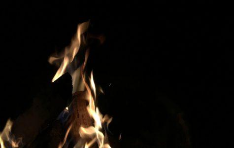 Amor Terrae: Camping