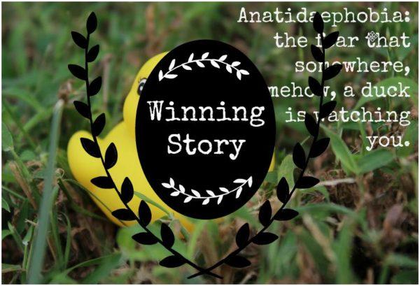 Writer's Quill Winning Stories for Anatidaephobia