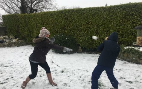 'Beast from the East' Puts Ireland on Shutdown
