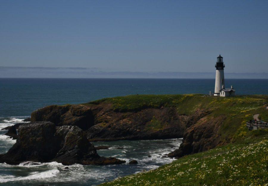 Yaquina Head Lighthouse, Newport Beach, Oregon. Diana used her Nikon D3400 with a 70-300 mm lenses.
