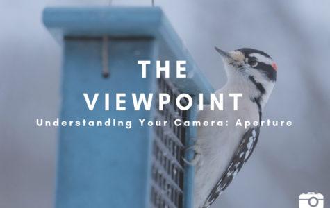 Understanding Your Camera: Aperture