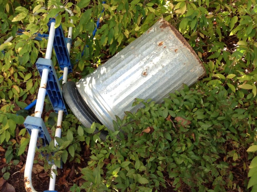 Trash can and step stool left to rust.