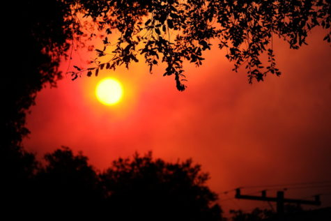 Wildfires in California are far more destructive than they were in past years, some statistics listing that the fires now burn twice as much area per year as they did in 1980.