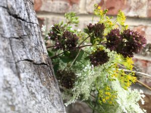 Wild flowers against a rustic brick wall in the late afternoon.