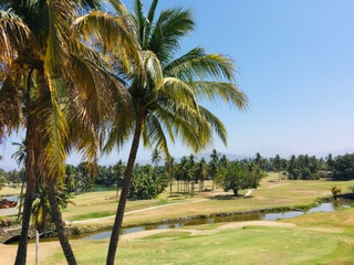 The view of a golf course from the house I stayed in during my vacation in Manzanillo.